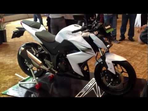 Kawasaki Z 250 - 2013