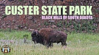 Custer State Park, South Dakota in the Black Hills