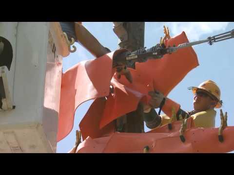 Team Fishel: Powerline Safety