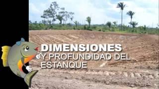 2.3: Construcción de estanques para piscicultura