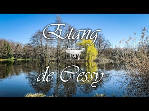 Cessy Pond - France