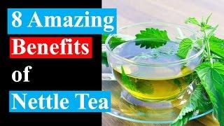 8 Amazing Benefits of Nettle Tea | Health Benefits of Nettle Tea