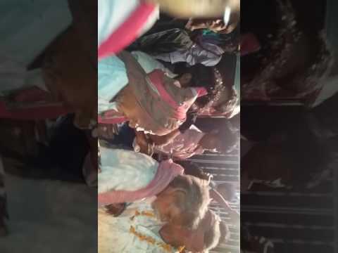Luckeesarai sadi video