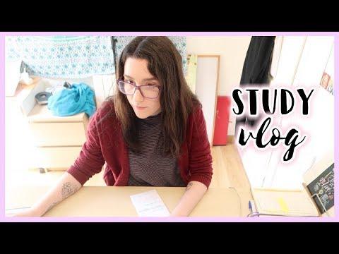 Trabajando en una práctica de proyecto · STUDY VLOG | Christine Hug