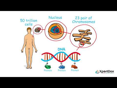 Proteomics and genomics for cancer treatment