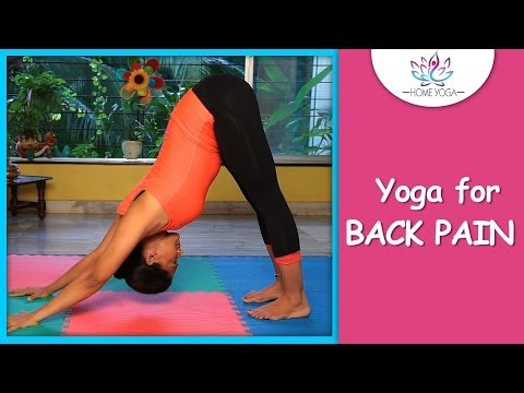 Adho Mukha Svanasana || Downward Facing Dog Pose || Cure Back Pain With Yoga