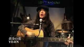 ネーネーズの「黄金の花」を歌ってみました。 Recorded on 12/03/23 - C...