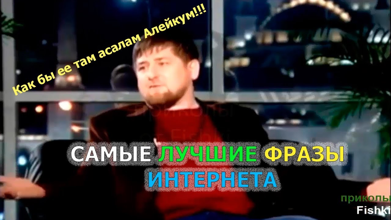 Фото Приколы Смешные картинки онлайн