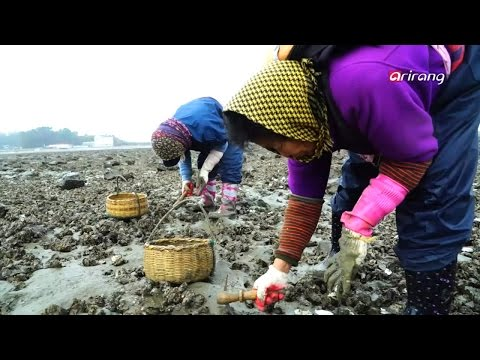 In Frame S3 _ Richard Kalvar, Winter Preparation in Korea _ Part 5