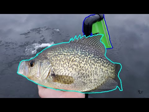 Crappie, Walleye And Pike Fishing With Sullivan Tip Downs