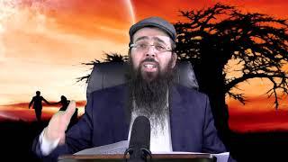 הרב יעקב בן חנן - מה התורה אומרת על חבר וחברה?