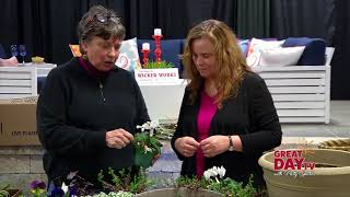 Timing is everything - spring planting tips