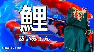 鯉 - あいみょん (cover)