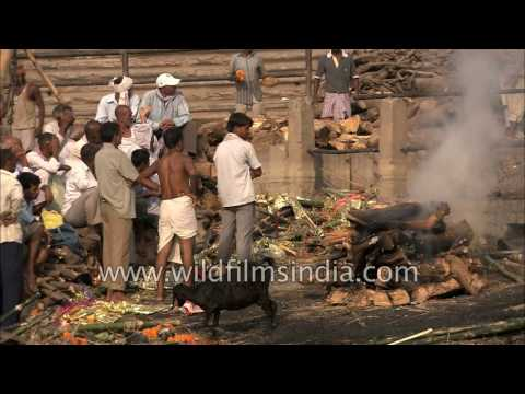 Ganges: River of Life, River of Death: ashes to ashes, dust to dust
