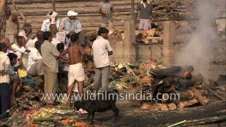 Repeat youtube video Ganges: River of Life, River of Death: ashes to ashes, dust to dust