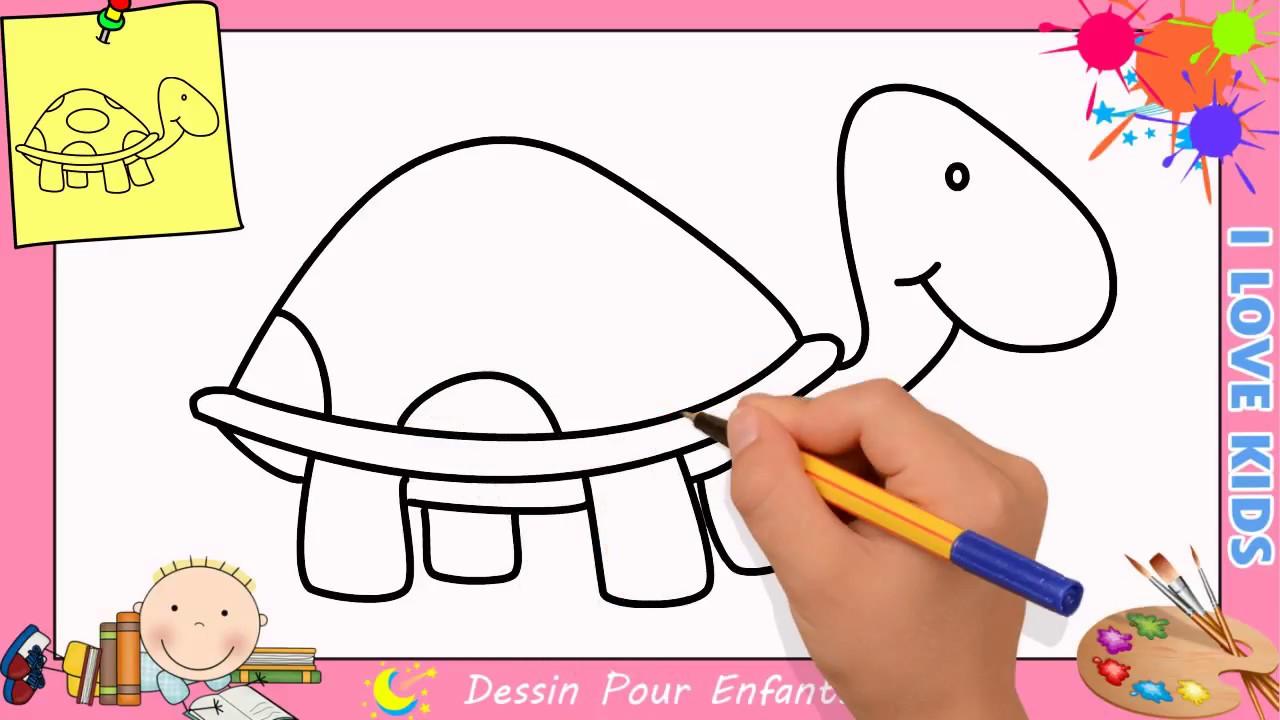 Comment dessiner une tortue facilement etape par etape - Comment dessiner une tortue ...