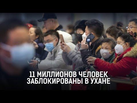 11 миллионов человек заблокированы в Ухане. Мир Итоги (25.01.20)