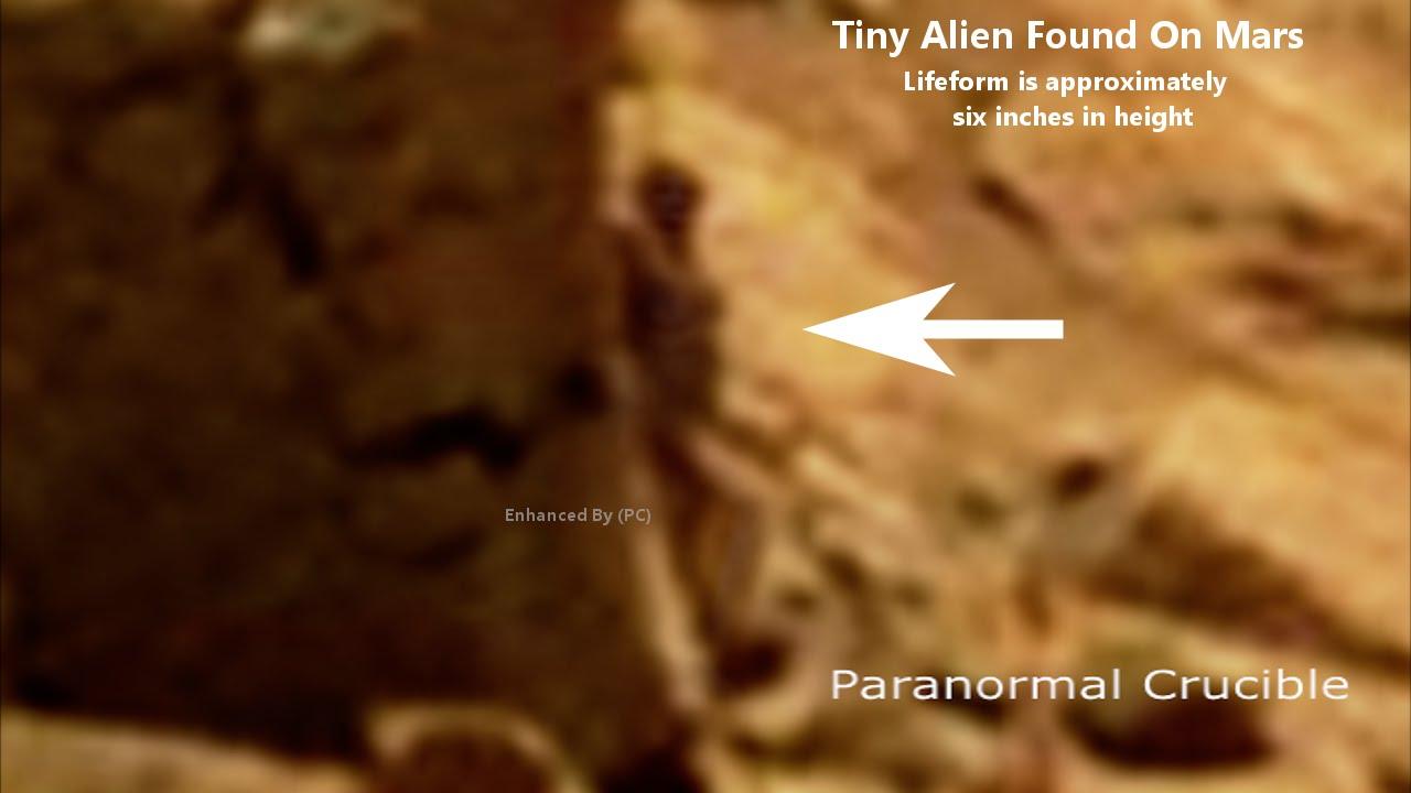 Le robot Curiosity a-t-il photographié la silhouette dun