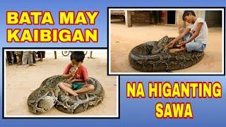 Bata may kaibigan na higanting sawa vlog 38