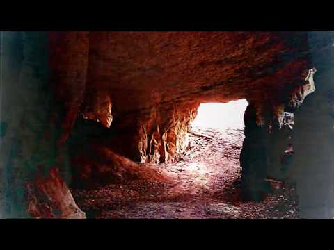 Deerhoof - Future Teenage Cave Artists (Official Lyric Video)
