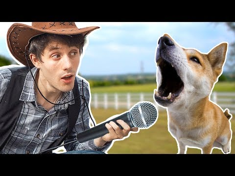 Remaking OLD TOWN ROAD With 100 Dogs.