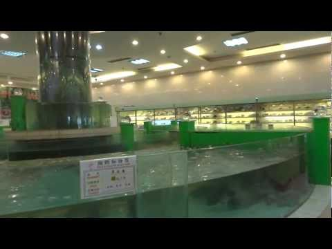 Qingdao Fu Sheng restaurant fish display