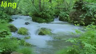Nhạc Thiền Hay Nhất - giảm stress - ngủ ngon - nhạc thiền phật giáo