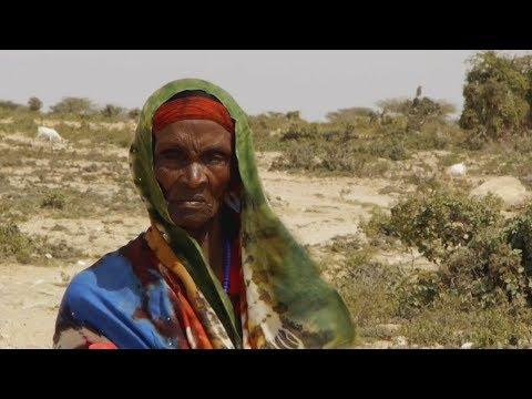 Mein Somalia – Zwischen Krieg und Armut (Web-Doku)