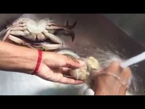 How to clean crab for Indian crab masala (gravy)