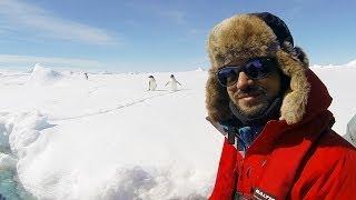 Antarctica Live: iceberg ahead!