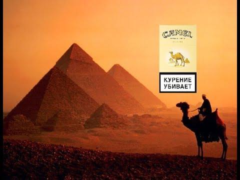 Верблюд И Кэмэл Блю II ОБЗОР ЦЭБАР #13 II Camel Blue