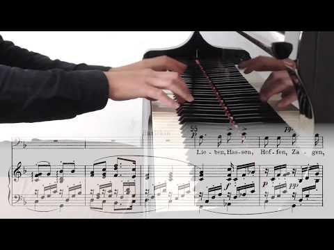 """Richard Strauss: Harlequin's Aria From Ariadne Auf Naxos  - """"Lieben, Hassen..."""" - Sing Along Opera"""