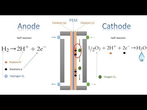 Thermodynamic efficiency of hydrogen fuel cells