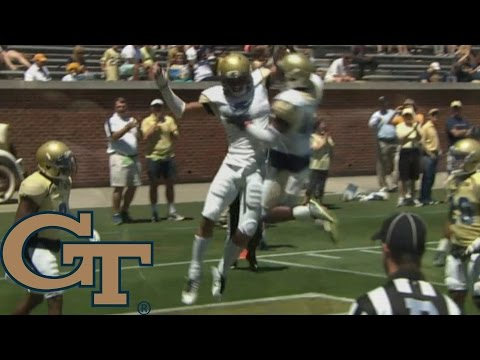 Georgia Tech Yellow Jackets Football Spring Game Highlights (2016)