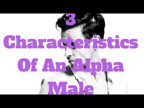 3 Characteristics Of An Alpha Male