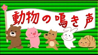 Как говорят животные по-японски? Урок японского языка. Ономатопея