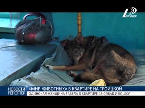 москвички желают познакомиться