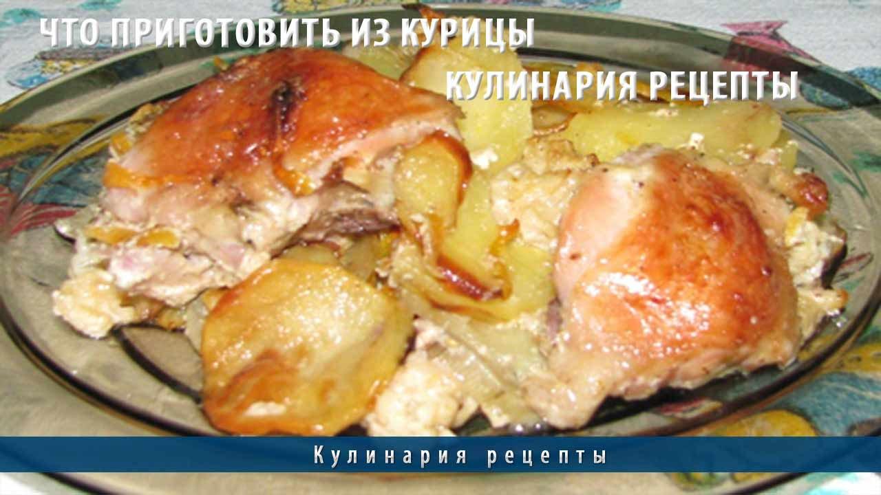 Что приготовить из курицы | Кулинария рецепты