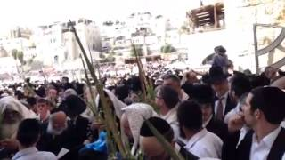 Wish You Were Here. Priestly Blessing Fest at Kotel www.RabbiDavidAaron.com