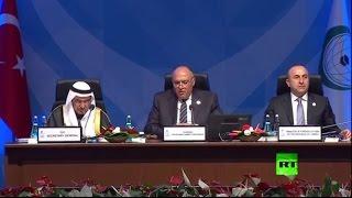 وزير الخارجية المصري سامح شكري يتجاهل أردوغان..