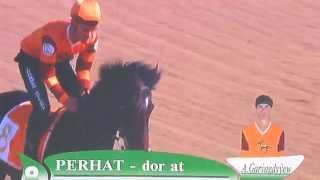 Akhal Teke stallions racing in Turkmenistan 26 April 2015