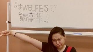 夜の部WELFES楽屋トークちゃんねるlive