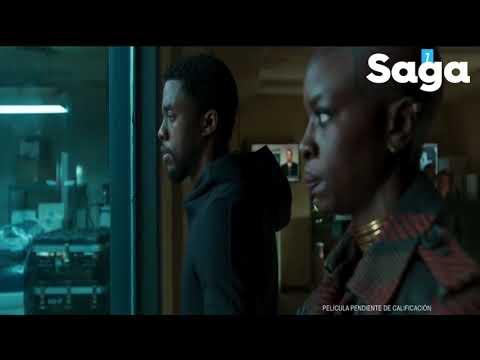 Pantera Negra, película palomera para este fin