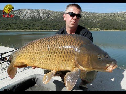 ŠARANski ribolov_TRIBALJ - BURA DONOSI KAPITALCE (novi trailer) / V.S.P. film