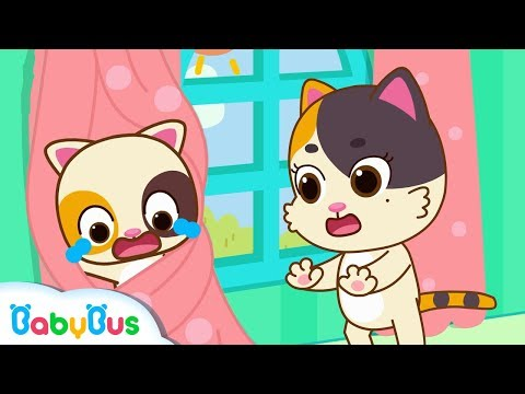 Baby Kitten's Trapped in Curtains | Play Safe Song | Home Sa