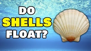 Do SHELLS Sink Or Float? | Water Play | Water Experiments