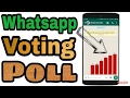 WHATSAPP Votting poll, pollus is a app giving love|