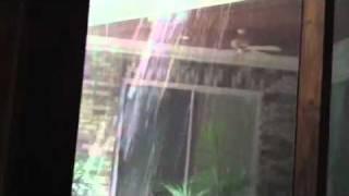 Thunderstorm(, 2011-07-09T00:15:05.000Z)