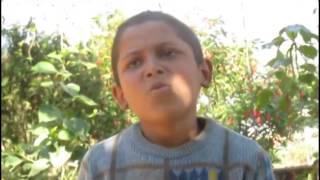 नेपाली एक बालकले उल्टो सुल्टो गित गाएर चकित पारे