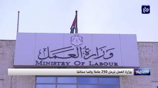 وزارة العمل تسفر 250 عاملا وافدا مخالفا - (13-9-2017)
